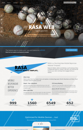 Rasa Baseball Website Template