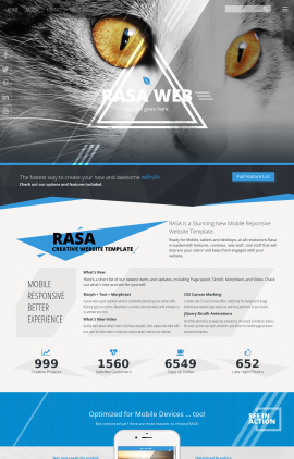 Rasa Cats Website Template