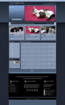 Accolade Cats Website Template
