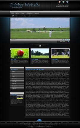Element Cricket Website Template