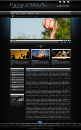 Element Volleyball Website Template