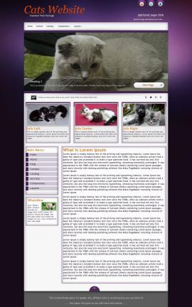 Acclaim Cats Website Template
