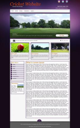 Acclaim Cricket Website Template