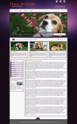 Acclaim Dogs Website Template