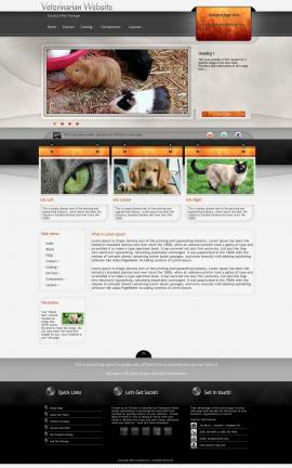 Dashboard Veterinarian Website Template