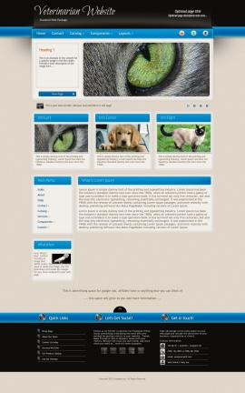 Promotion Veterinarian Website Template