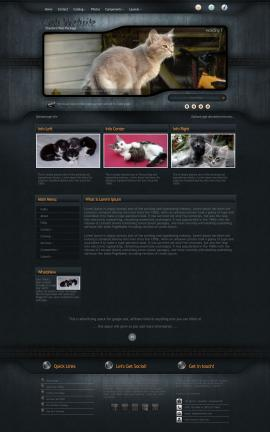 Precision Cats Website Template