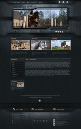 Precision Equestrian Website Template