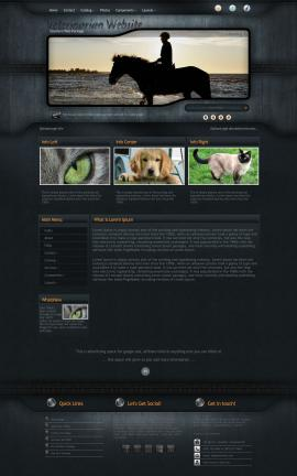 Precision Veterinarian Website Template