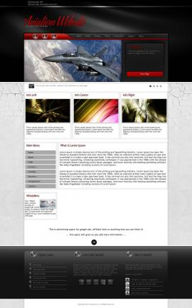 Experience Aviation Website Template