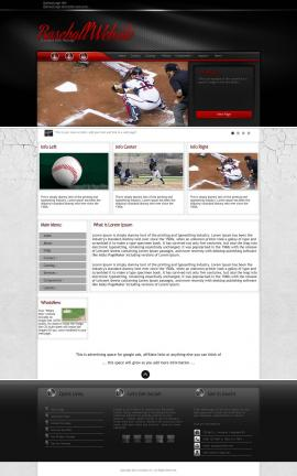 Experience Baseball Website Template