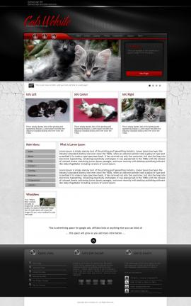 Experience Cats Website Template