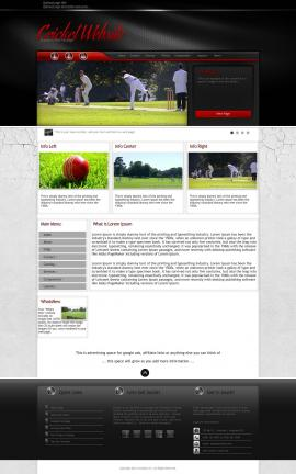 Experience Cricket Website Template