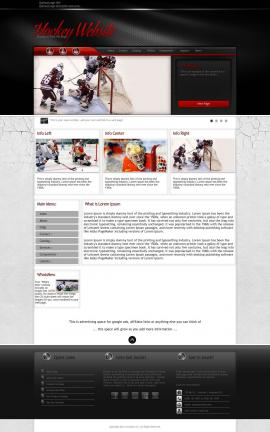 Experience Hockey Website Template