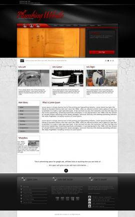 Experience Plumbing Website Template