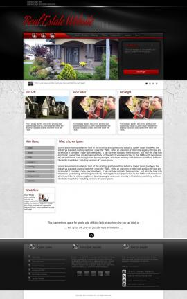 Experience Real-estate Website Template