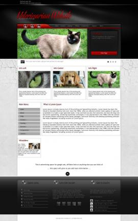 Experience Veterinarian Website Template