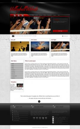 Experience Volleyball Website Template