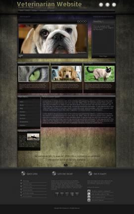 Ultraviolet Veterinarian Website Template