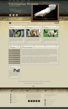 Evolution Veterinarian Website Template