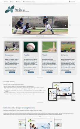 Fortis Baseball Website Template