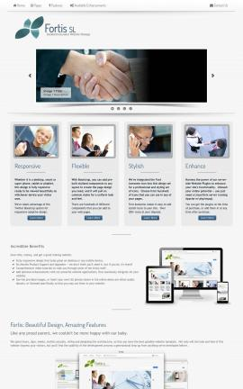 Fortis Insurance Website Template