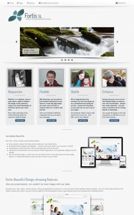 Fortis Photography Website Template