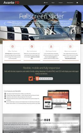 Avante Aviation Website Template