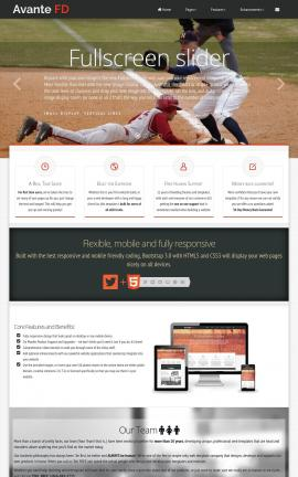 Avante Baseball Website Template