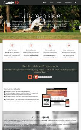 Avante Cricket Website Template