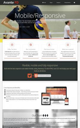 Avante Volleyball Website Template