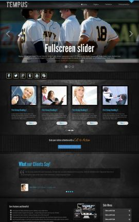 Tempus Baseball Website Template