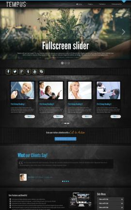 Tempus Family Website Template