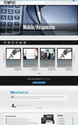 Tempus Accounting Website Template