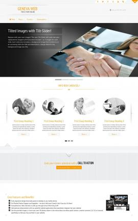 Geneva Accounting Website Template