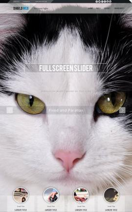 Diavlo Cats Website Template