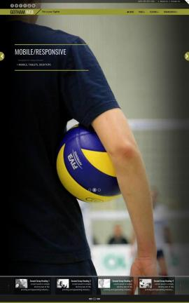 Gotham Volleyball Website Template