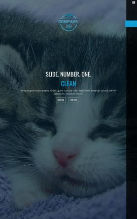 Onyx Cats Website Template