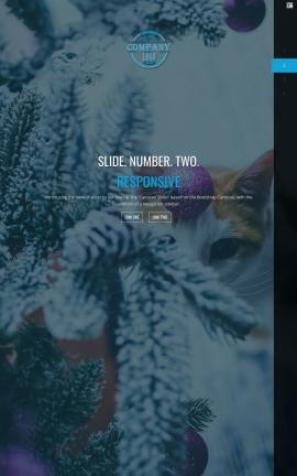 Onyx Christmas Website Template