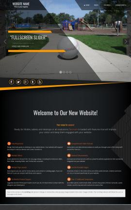Denmark Baseball Website Template