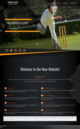Denmark Cricket Website Template