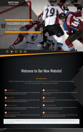 Denmark Hockey Website Template