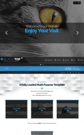 Blacktop Cats Website Template
