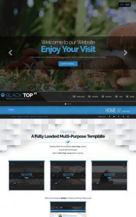 Blacktop Nature Website Template