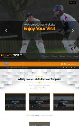 Blacktop Cricket Website Template