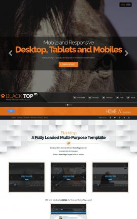 Blacktop Equestrian Website Template