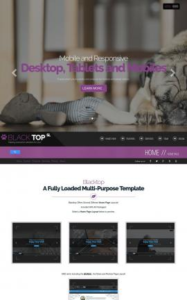 Blacktop Dogs Website Template