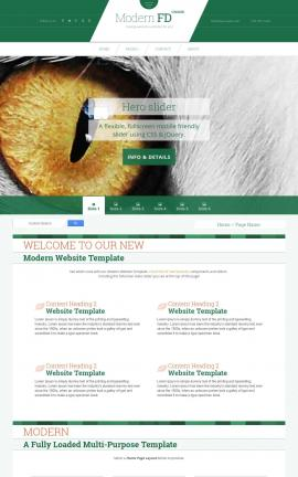 Modern Cats Website Template