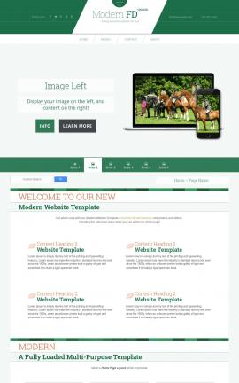Modern Equestrian Website Template