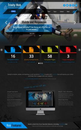 Trinity Baseball Website Template